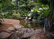 City-Botanic-Gardens-Brisbane-Australia-Naomi-VanDoren-5